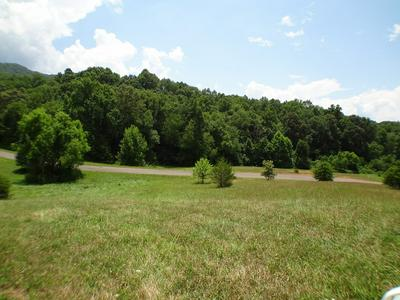 LOT #24 PORTER CREEK ROAD, Franklin, NC 28734 - Photo 2