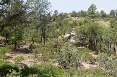 910 S MONUMENT VALLEY DR, Payson, AZ 85541 - Photo 1
