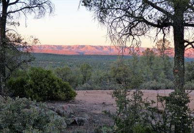 801 N GRAHAM RANCH RD, Payson, AZ 85541 - Photo 1