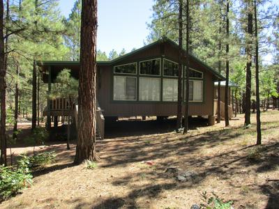 3024 APACHE DR, Happy Jack, AZ 86024 - Photo 2