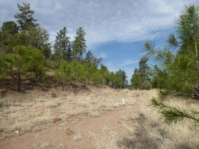 885 E FOREST SERVICE RD 512, Young, AZ 85554 - Photo 1