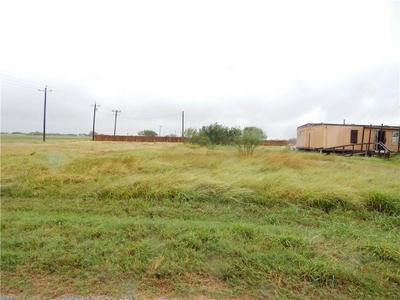 2924 COUNTY ROAD 93, Robstown, TX 78380 - Photo 2