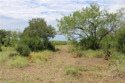 00 LOT 2 VISTA FINA DRIVE, Sandia, TX 78383 - Photo 1