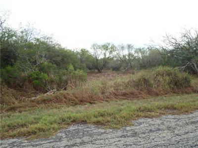 6131 COUNTY ROAD 523, Skidmore, TX 78389 - Photo 1