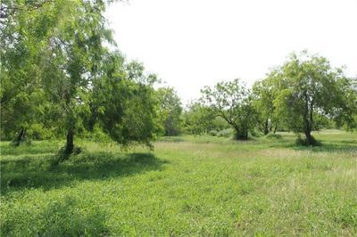0 WEST LAKE DRIVE, Sandia, TX 78383 - Photo 1