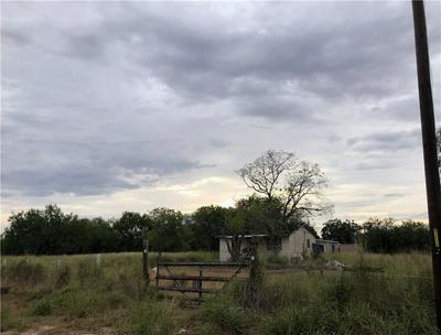 5967 COUNTY ROAD 99, Sandia, TX 78383 - Photo 2