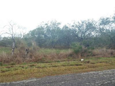 6101 COUNTY ROAD 523, Skidmore, TX 78389 - Photo 2