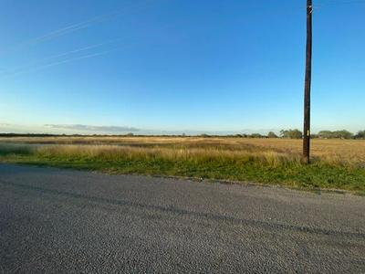 04 COUNTY ROAD 56, Robstown, TX 78380 - Photo 1