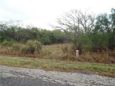 6131 COUNTY ROAD 523, Skidmore, TX 78389 - Photo 2