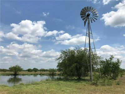 0000 CORRIGAN ROAD, Skidmore, TX 78389 - Photo 1