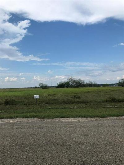 TBD5 KANA ROAD # VI, Sandia, TX 78383 - Photo 2
