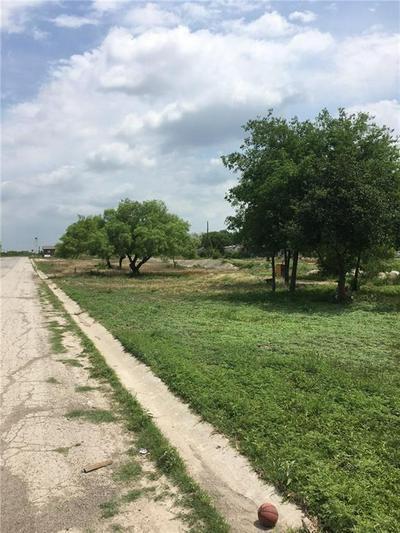 1023 PEARSON ST, Freer, TX 78357 - Photo 1