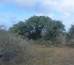 4181 LA PARA RD, Beeville, TX 78102 - Photo 1