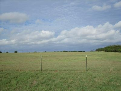110 COUNTY ROAD 436, Three Rivers, TX 78071 - Photo 2