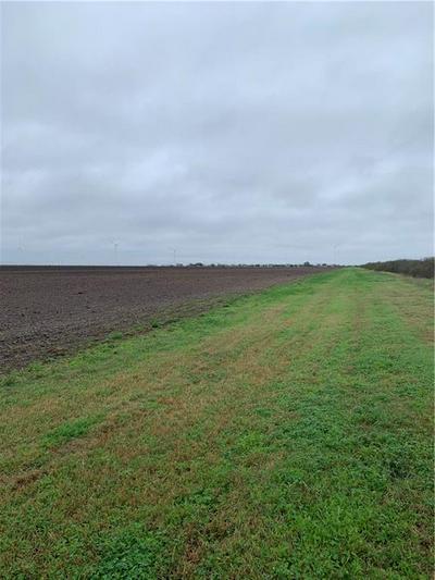 000 NE COUNTY ROAD 1064, Taft, TX 78390 - Photo 2