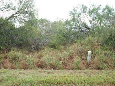 6163 COUNTY ROAD 523, Skidmore, TX 78389 - Photo 1