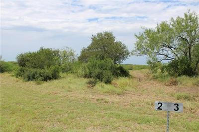 00 LOT 2 VISTA FINA DRIVE, Sandia, TX 78383 - Photo 2