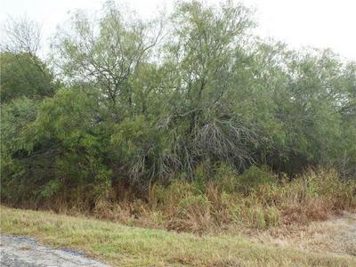 6163 COUNTY ROAD 523, Skidmore, TX 78389 - Photo 2