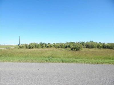 3206 COUNTY ROAD 44, Robstown, TX 78380 - Photo 2