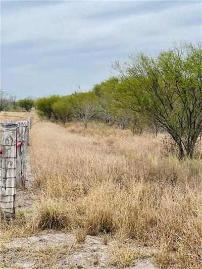 LOT 25 N HOLLOW TREE, Alice, TX 78332 - Photo 2