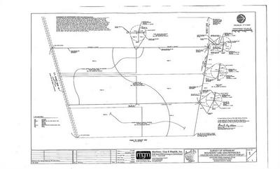 TRACT #4 - CR 46 0000, Robstown, TX 78380 - Photo 2