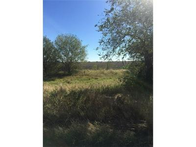 8685 STATE HWY 359, Skidmore, TX 78389 - Photo 2