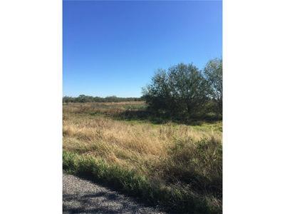 8685 STATE HWY 359, Skidmore, TX 78389 - Photo 1