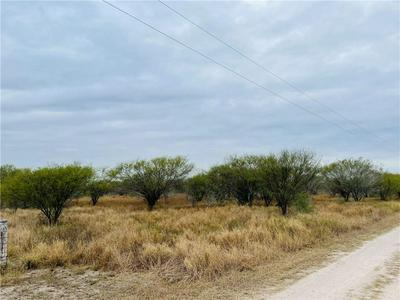 LOT 25 N HOLLOW TREE, Alice, TX 78332 - Photo 1