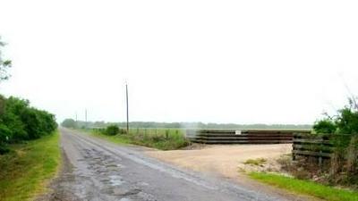 TR # 7 E COUNTY ROAD 2350, Riviera, TX 78379 - Photo 2
