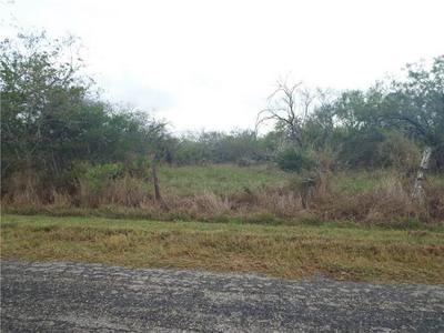 6101 COUNTY ROAD 523, Skidmore, TX 78389 - Photo 1