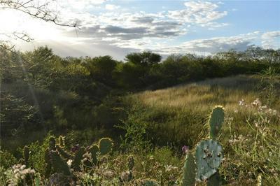 00 W WEST LAKE DR DRIVE, Sandia, TX 78383 - Photo 2