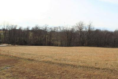 LOT 110 EMILY CT, BOONVILLE, MO 65233 - Photo 1