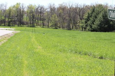 LOT 121 OLIVIA CT, BOONVILLE, MO 65233 - Photo 2