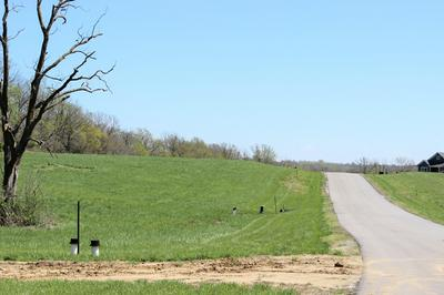 LOT 85 MADEWOOD RD, BOONVILLE, MO 65233 - Photo 1