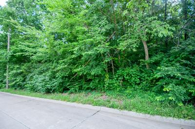 LOT 3 GARDEN DR, COLUMBIA, MO 65202 - Photo 2