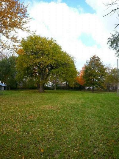 21993 COUNTY RD 181, CARROLLTON, MO 64633 - Photo 2