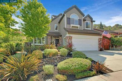 313 WINDMILL CANYON PL, CLAYTON, CA 94517 - Photo 1