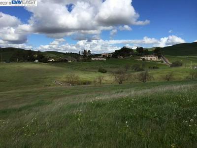 7798 LAGUNA HEIGHTS CT, SUNOL, CA 94586 - Photo 1