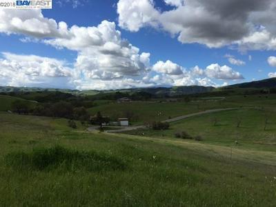 7755 LAGUNA HEIGHTS CT, SUNOL, CA 94586 - Photo 1