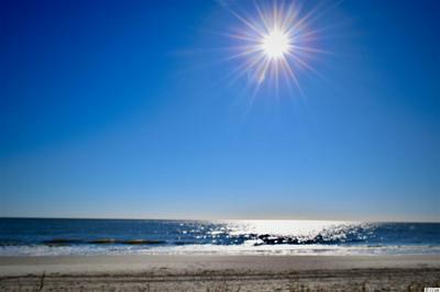 1417 S OCEAN BLVD # 301, Surfside Beach, SC 29575 - Photo 2