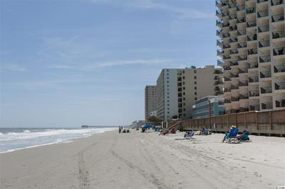 1210 N WACCAMAW DR UNIT 1602, Garden City Beach, SC 29576 - Photo 2