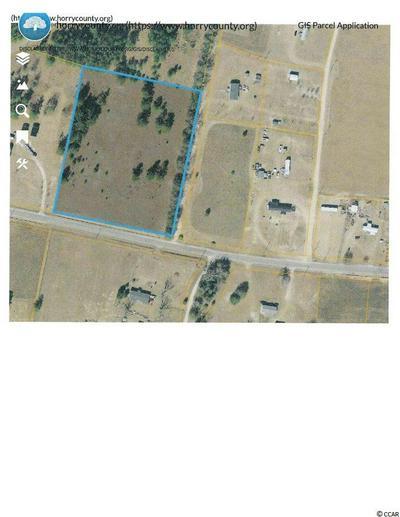 TBD LAKE SWAMP RD., Nichols, SC 29581 - Photo 1