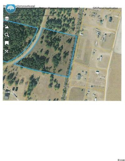 TBD NORTH DR., Nichols, SC 29581 - Photo 1
