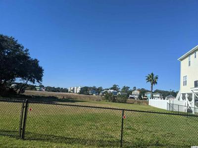 1105 DOGWOOD DR N, Garden City Beach, SC 29576 - Photo 2