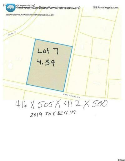 TBD LAKE SWAMP RD., Nichols, SC 29581 - Photo 2
