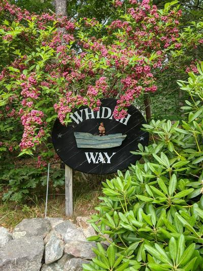 126 WHIDAH WAY, Wellfleet, MA 02667 - Photo 1