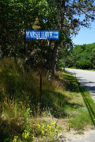 3 MARSH HAWK TRCE, Truro, MA 02666 - Photo 2