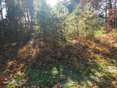 10 NORSE PINES DR, Sandwich, MA 02537 - Photo 2