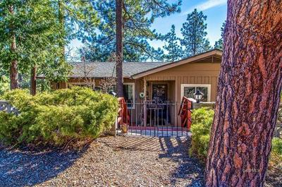 53475 DOUBLE VIEW DR, Idyllwild, CA 92549 - Photo 2