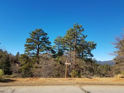 0 KLAMATH ROAD, Big Bear Lake, CA 92314 - Photo 1